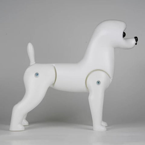 Model Dog - Bichon