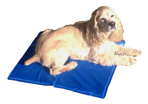 Dog Cooling Mats ... 3 sizes ... starting at ...