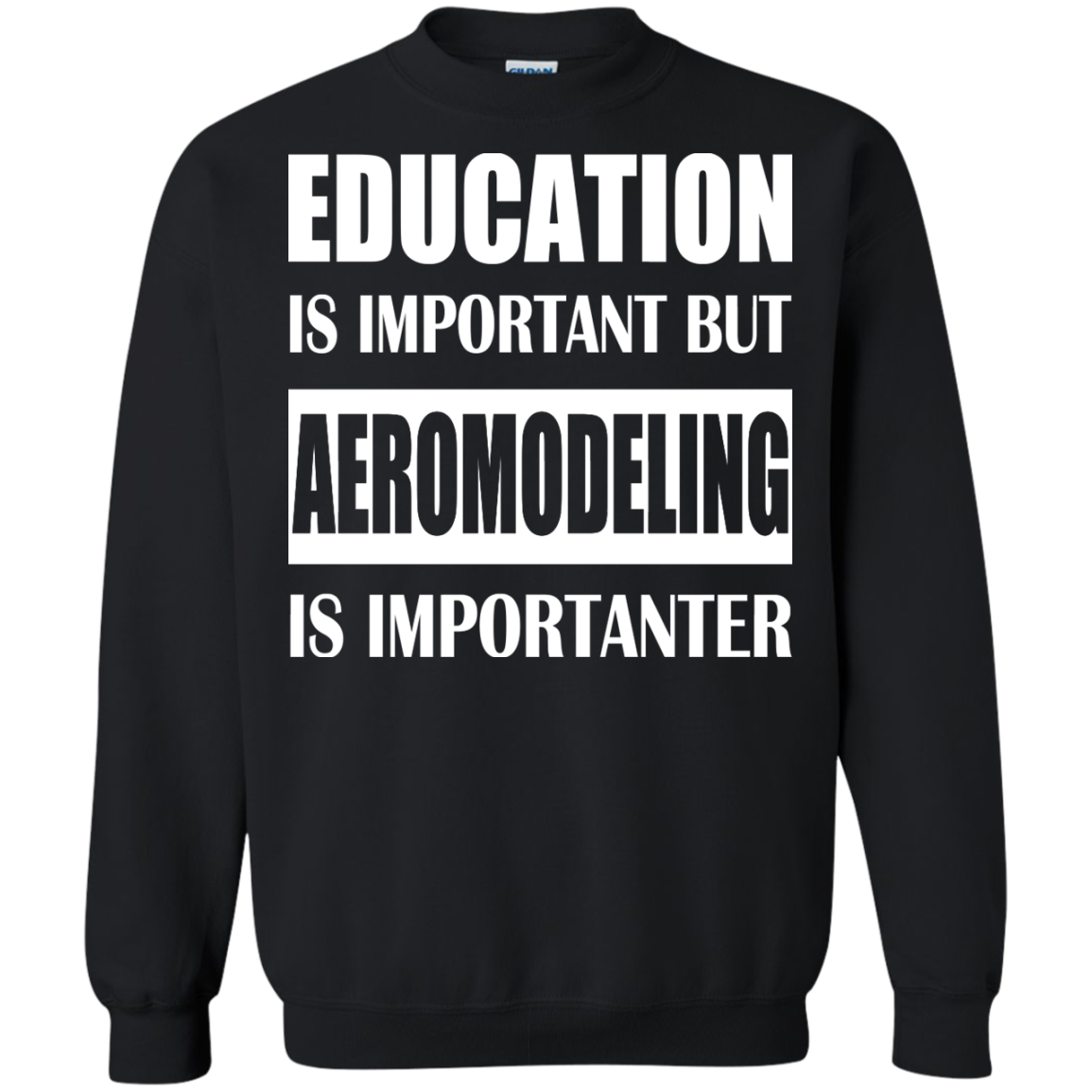 Education Is Important But Aeromodeling Is Importanter Sweatshirts