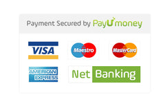 Secured Payments with PayU Money