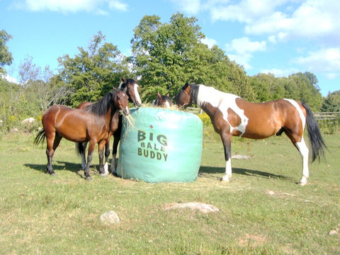 Big Bale Buddy Round Bale Feeder