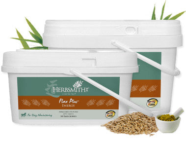 Herbsmith Flax Plus Energy