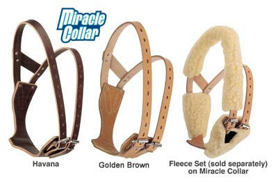 The Miracle Collar by Weaver