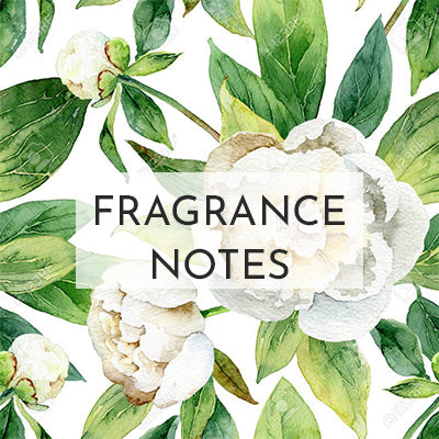 Herb & Root | Luxurious Perfume Oils, Bath Oils, and Massage Oils
