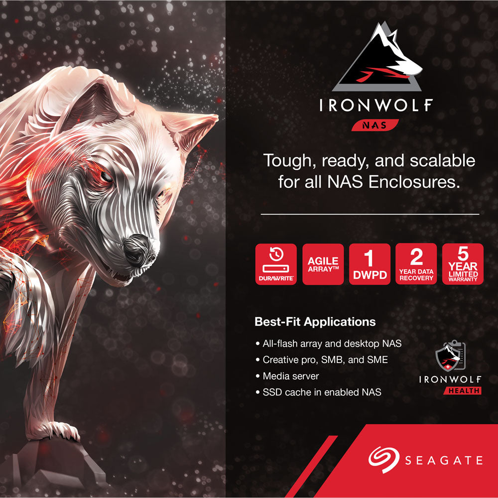 Seagate Ironwolf 110 SSD Product Brief