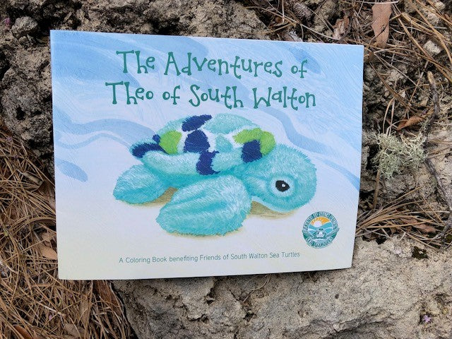 Theo Sea Turtle Coloring Book