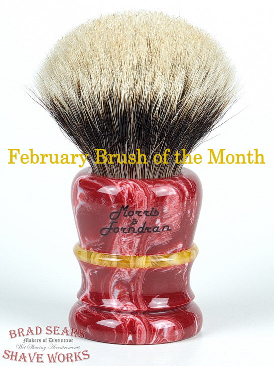 The Morris & Forndran Style 1 Bi-Colour, The BSSW Brush of the Month