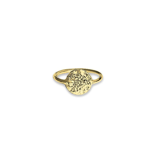 Vera Vega Lucky Coin Ring - forgyldt - Nordic Jewellery House