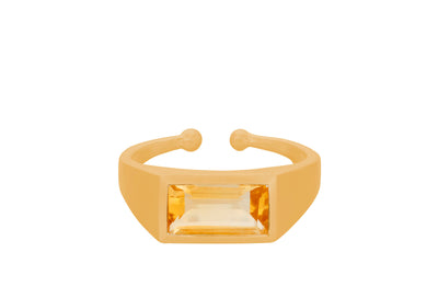 Pernille Corydon Treasure ring forgyldt - Nordic Jewellery House