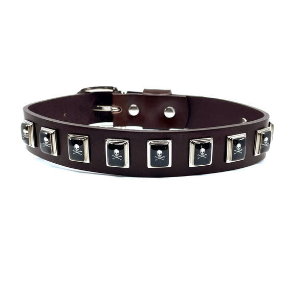 Dog Collar - Skull & Crossbones