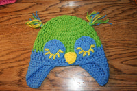 6 to 12 Month Owl Beanie - Farm District Crafts