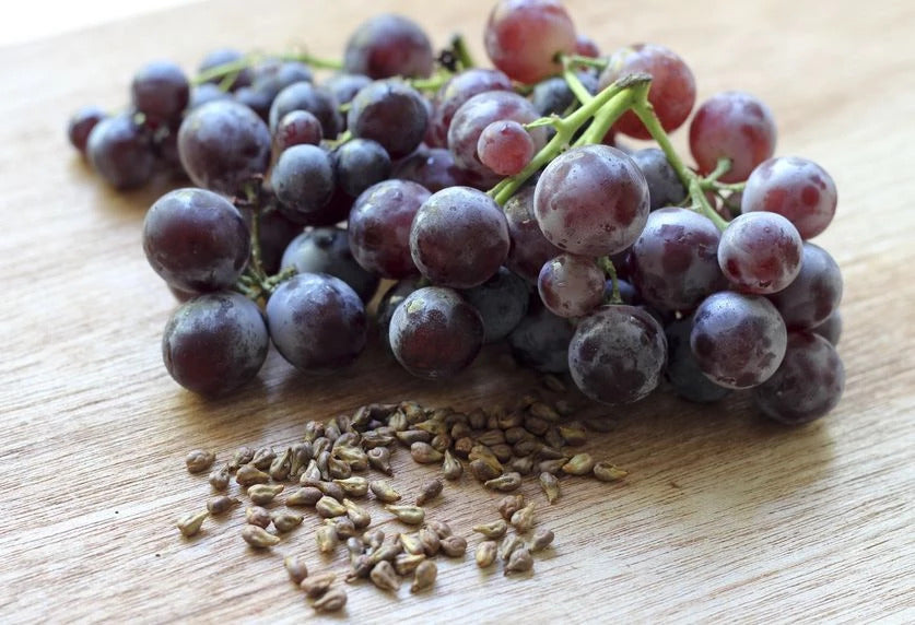 Grape Seed Extract: 10 remarkable health benefits