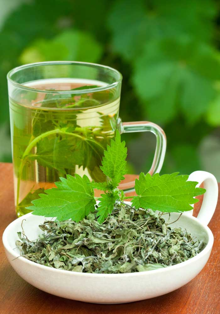 Nettle Leaf: Natural remedy to treat kidney problems
