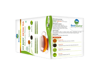 Load image into Gallery viewer, FIT BODY Detox Tea - BestSourceNutrition.com