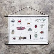 Numero 74 School Poster - Insects
