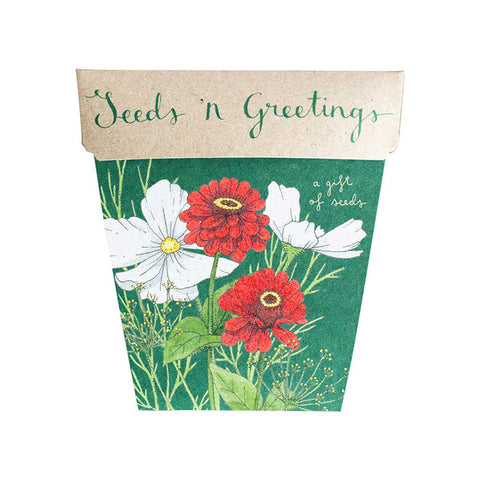 Seeds n' Greetings Gift of Seeds by Sow 'n Sow | Wild & Whimsical Things www.wildandwhimsicalthings.com.au