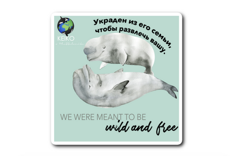 Wild And Free Russian Belugas Sticker wanderlust, keiko, keiko conservation, wandering, travel, = - Thessalonike