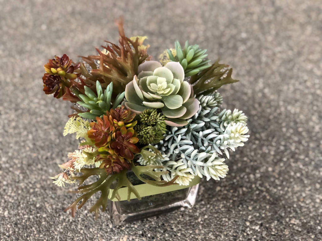 Faux Succulents And Faux Staghorns In A Square Vase Bloom Room