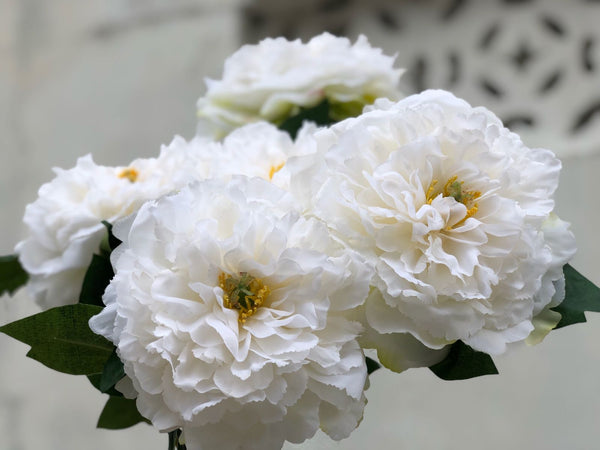 Faux Peonies Bunch - Fluffy White