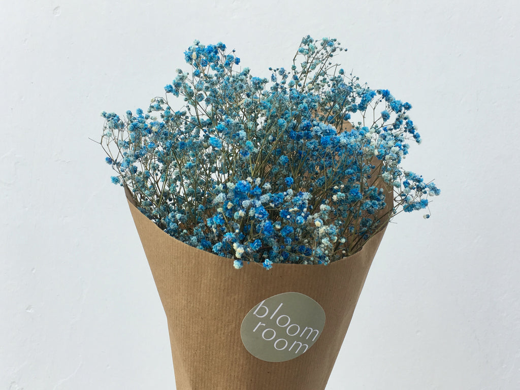 Dried Baby S Breath Coloured Bloom Room