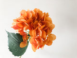 Faux Hydrangea - Bright Orange, Single