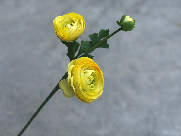 Faux Ranunculus - Other Colours Avail.