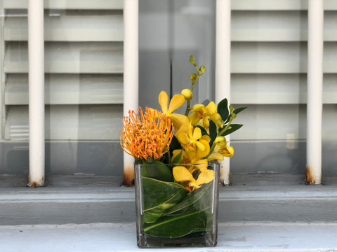 Orange Pin Cushion & Yellow Mokara Orchid Cocktail Arrangement