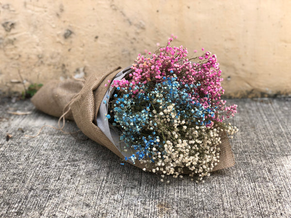 Dried Mixed Colour Baby's Breath