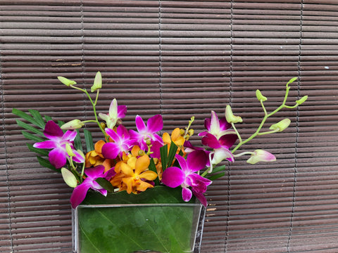 Two-Tone Purple Dendrobium & Orange Mokara Orchid Table Arrangement