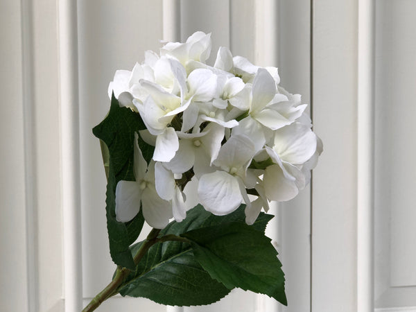 Faux Hydrangea - White, Single