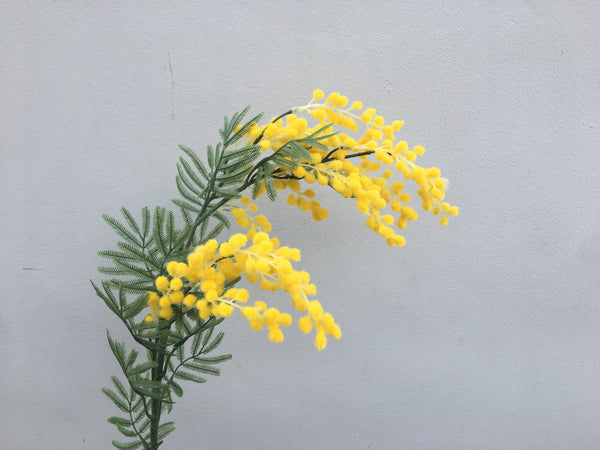 Faux Mimosa - Yellow
