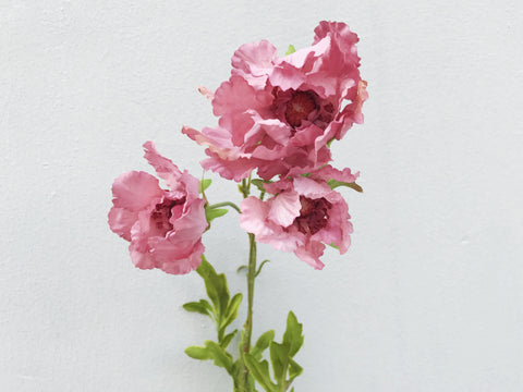Faux Scabiosa - Standard, Other Colours Avail.