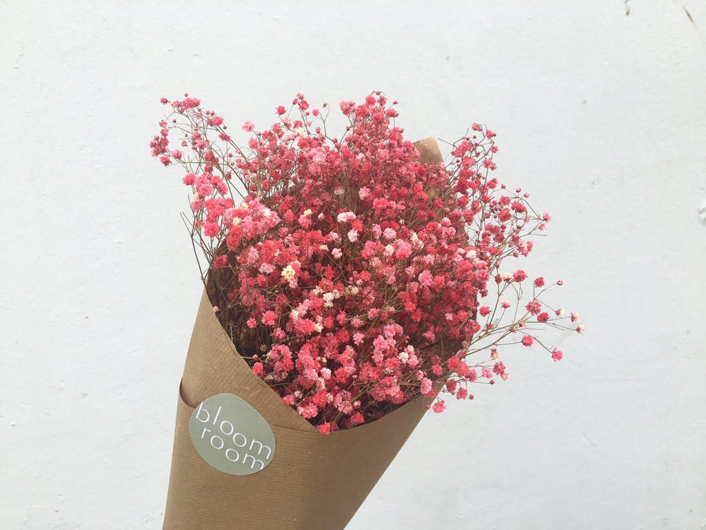 Dried Babys Breath Coloured Bloom Room