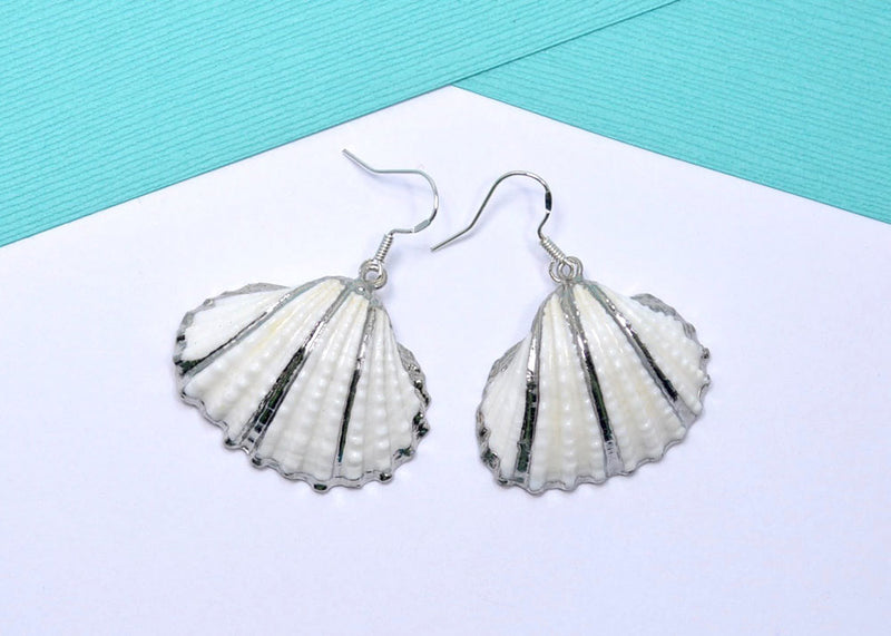 natural sea shell earrings
