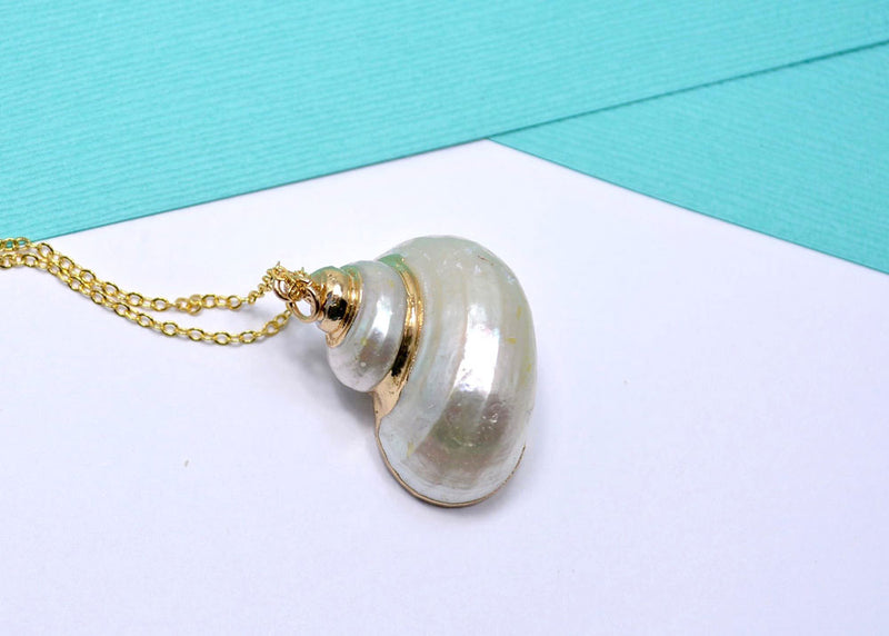 natural sea shell jewelry pendant