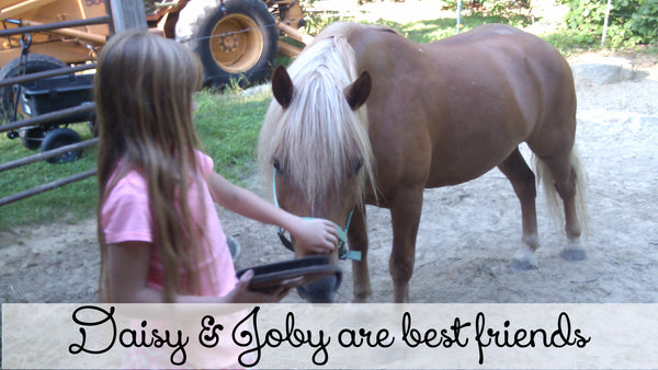 Daisy & Joby- A girl and her horse