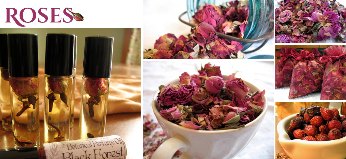 Dried Rose FAQ