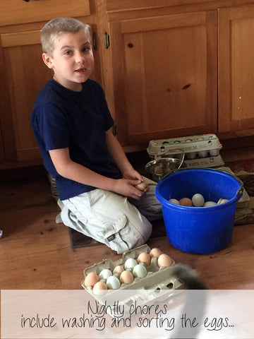 sorting the eggs