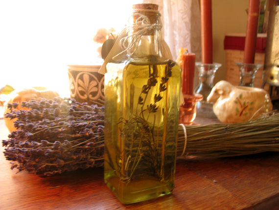 infusing lavender oil for salve making