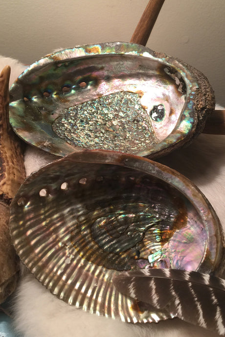 abalone smudging shell- Lizzy Lane Farm Apothecary