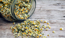 Load image into Gallery viewer, Organic German Chamomile Flower Tops (Matricaria Chamomilla) - Lizzy Lane Farm Apothecary