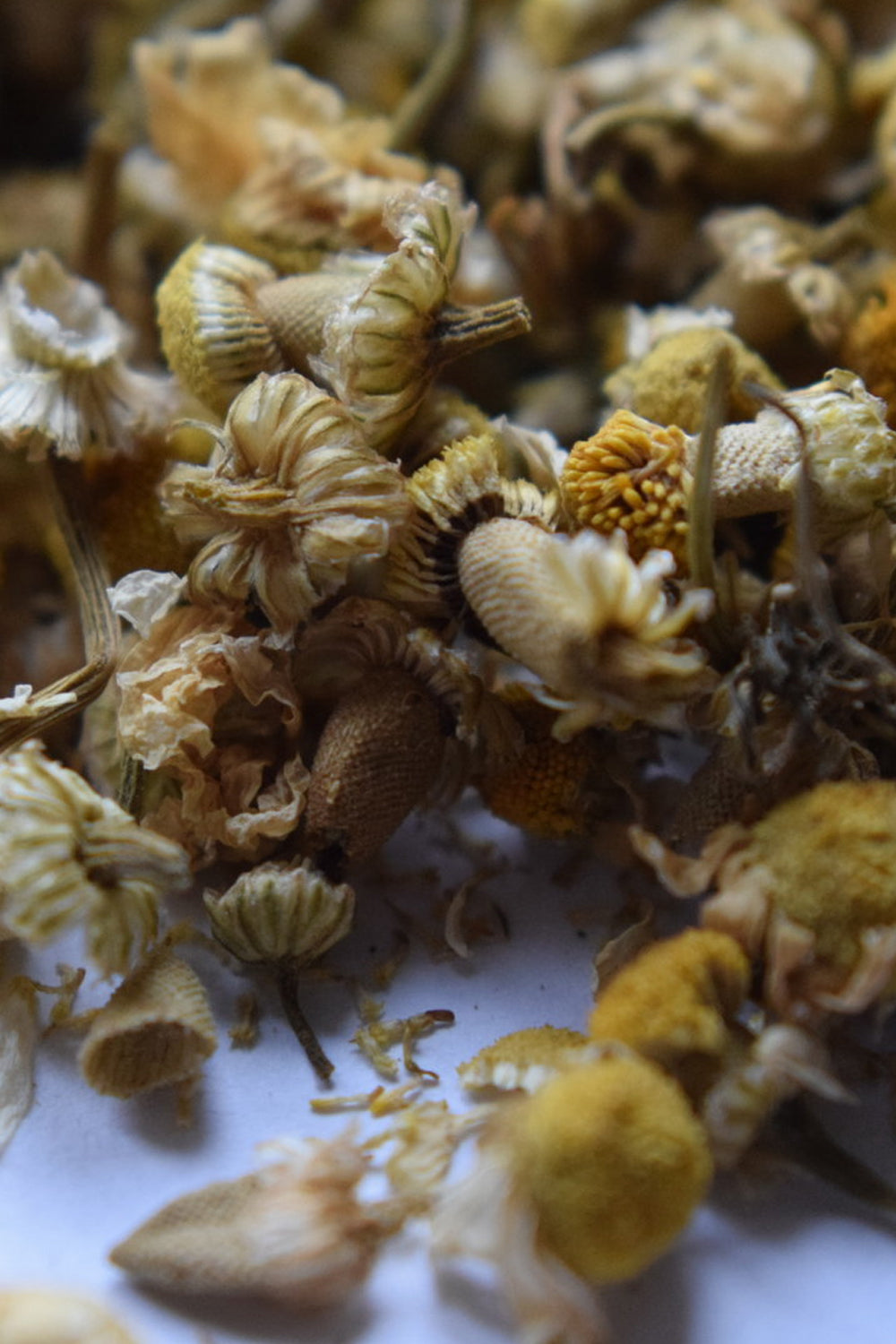 organic dried chamomile flower blossoms, loose chamomile tea