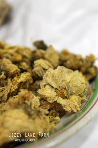chrysanthemum dried flowers
