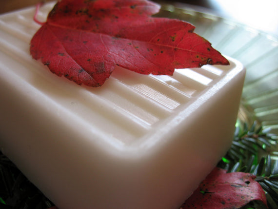 butter bar soap in our limited edition scent
