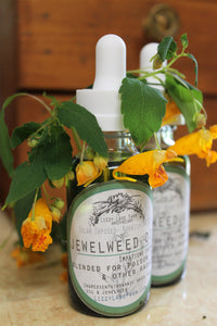 organic fresh jewelweed healing oil