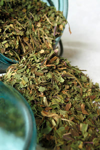 Organic Wintergreen Leaf- Loose Wintergreen Dried Herb (Gaultheria procumbens) - Lizzy Lane Farm Apothecary