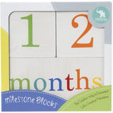Milestone Blocks - Multi-coloured
