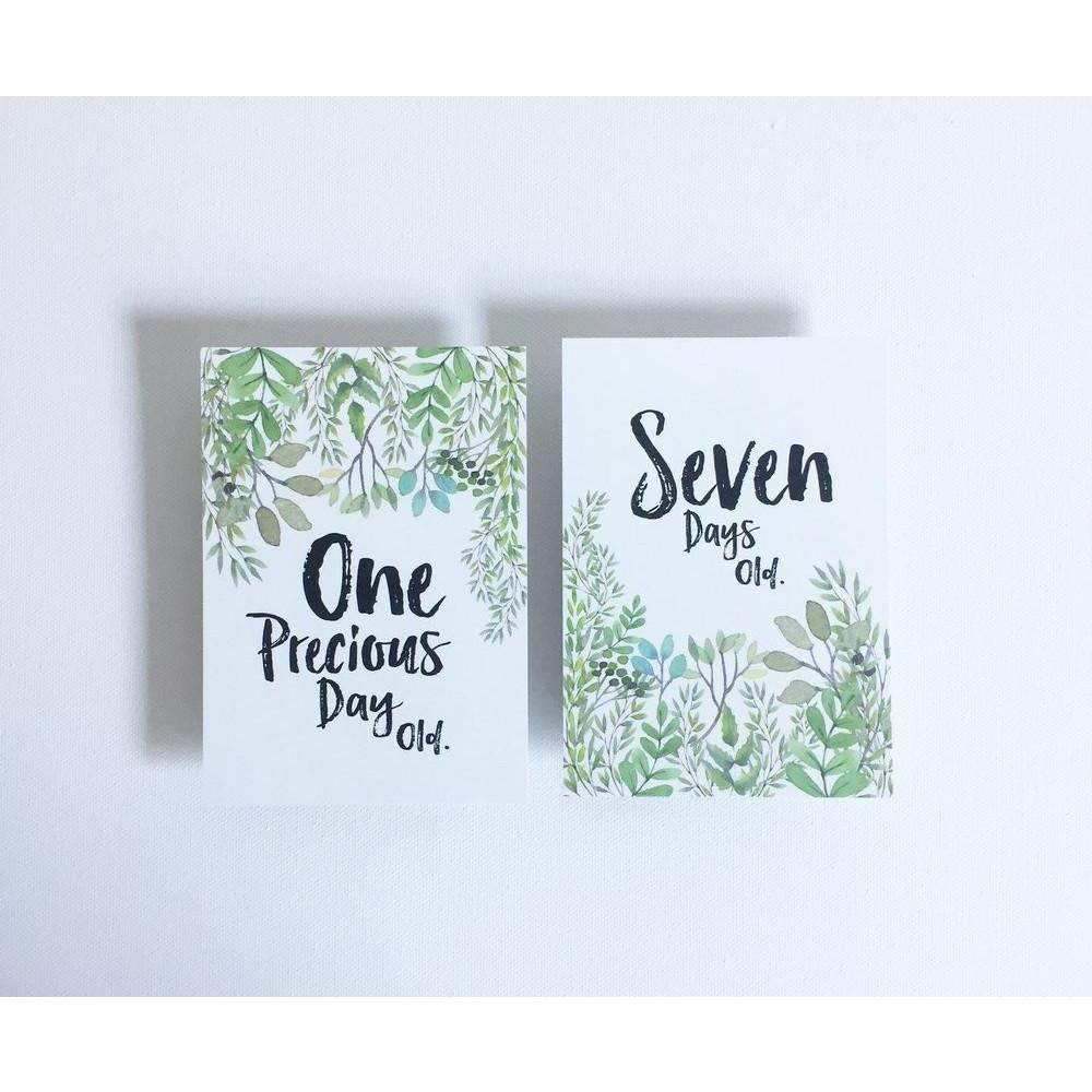 Baby Milestone Cards - The Nature Collection - Baby Luno