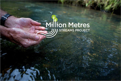The Million Metres Streams Project