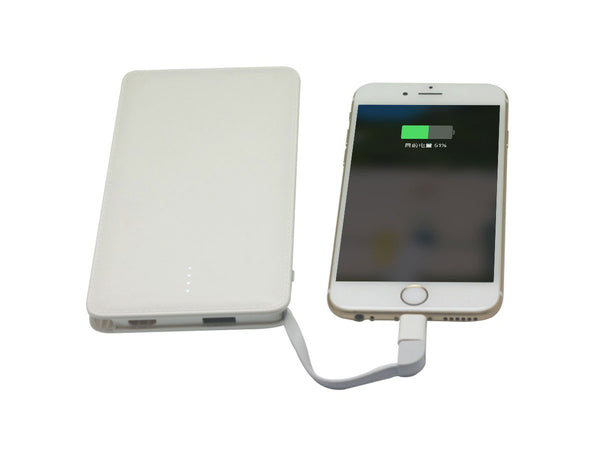 5 Day Phone And Tablet Charger -   The Traveler